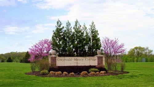 Gwynedd Mercy University Top Online School Counseling Degree